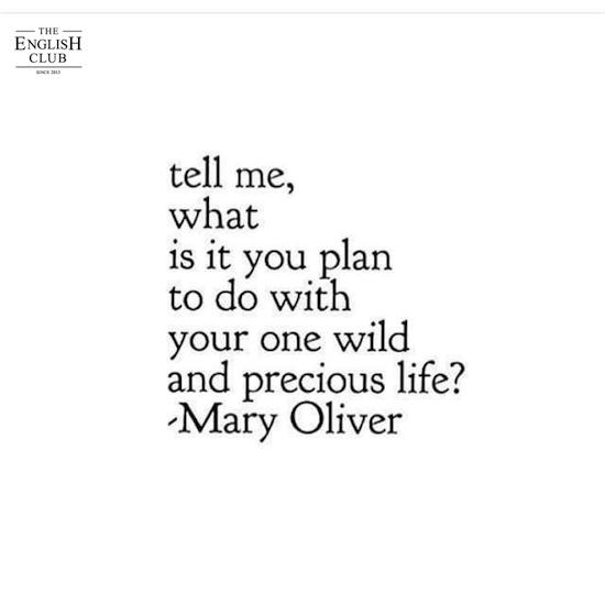 英語の名言:Mary Oliver